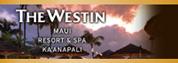 ウェスティン リゾート&スパ