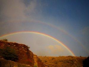 w.rainbow.jpg
